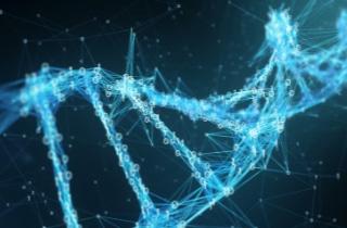 L'ADN du microprocesseur